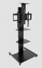 Allegri Техно - 3-50  (D03-0-0-700-010)