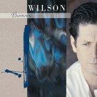 Brian Wilson BRIAN WILSON (180 Gram vinyl record)