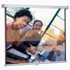 Projecta SlimScreen (96
