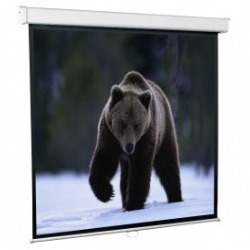 ScreenMedia Настенный экран Economy, формат 127*127см 1:1 MW (