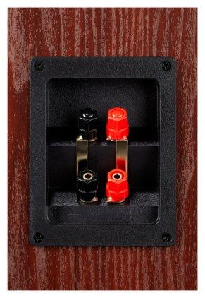 Напольная акустика Polk Audio TSx 550T black