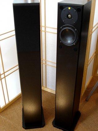 Totem Acoustic Arro black ash