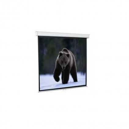 ScreenMedia Настенный экран Economy, формат 180*180см 1:1 MW (