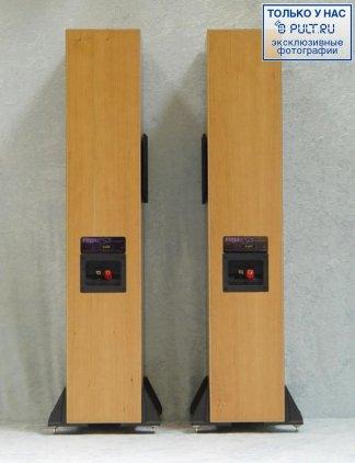 Напольная акустика Rega RS5 piano black