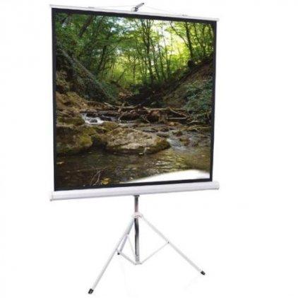 Экран ScreenMedia SAM-1104(1:1) 80x80 203x203 MW (мобильный)