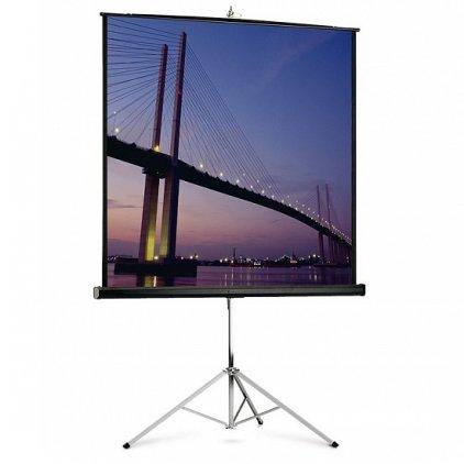 """Экран Projecta Picture King 162х213см (100"""") Matte White на штативе 4:3 (10430035)"""