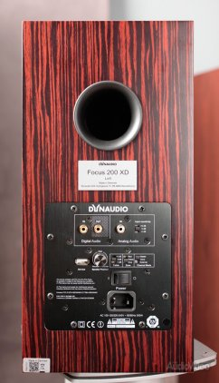 Dynaudio Focus XD 200 walnut