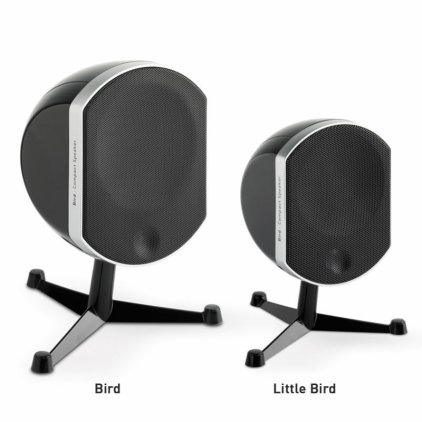 Focal Little Bird black