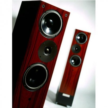 LIVING VOICE AVATAR II OBX-R2 santos rosewood
