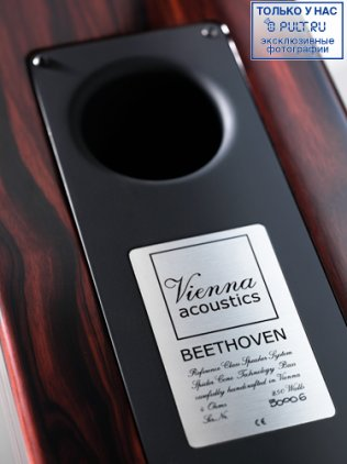 Vienna Acoustics Beethoven Concert Grand piano black