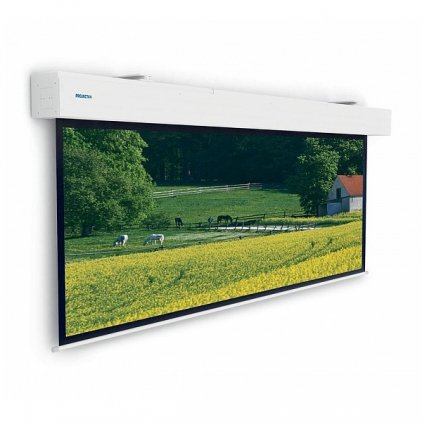 "Projecta Elpro Large Electrol 223x350 см (158"") Matte White"