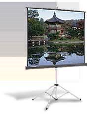 """Экран Da-Lite Picture King (1:1) 84""""х84"""" 213x213 MW (мобильный)"""