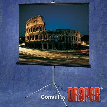 """Draper Diplomat NTSC (3:4) 244/96"""" (100"""", 8') 152*203 XH800E"""