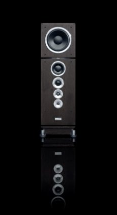 Напольная акустика Dynaudio Consequence Ultimate Edition wenge with chrome
