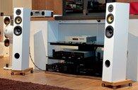 Напольная акустика Davis Acoustics Courbet №7
