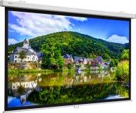 Projecta ProScreen 179x280 cm (125