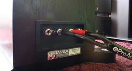 Напольная акустика Tannoy Revolution DC6 T SE espresso
