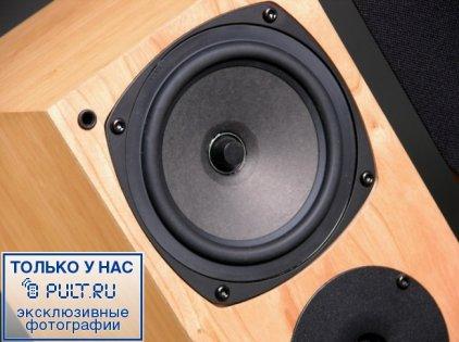 Акустическая система Rega RS1 piano black