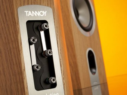 Акустическая система Tannoy Revolution Signature DC6 light oak