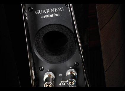 Полочная акустика Sonus Faber Guarneri evolution piano black