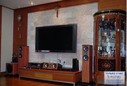 Центральный канал Polk audio TSi CS10 cherry