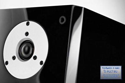 Напольная акустика Dynaudio Focus 260 gloss black lacquer
