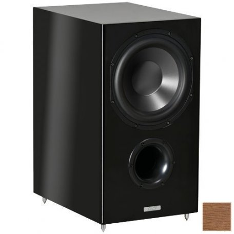 ASW Cantius AS 412 walnut tree