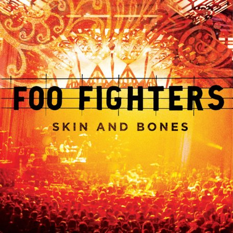 Foo Fighters SKIN AND BONES (180 Gram)
