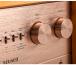 iFi Audio Retro Stereo 50 картинка 1